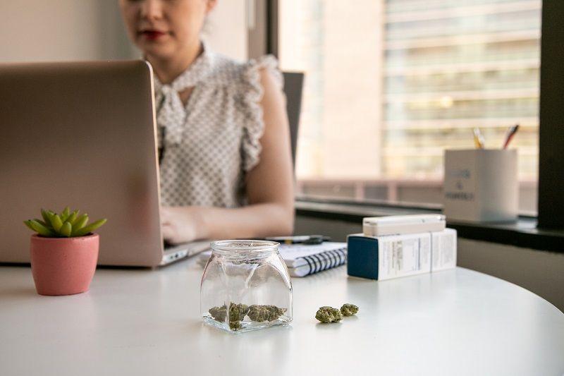 Female Cannabis Entrepreneur working on Marketing for Marijuana Business in Bright Soft Lit Office cm